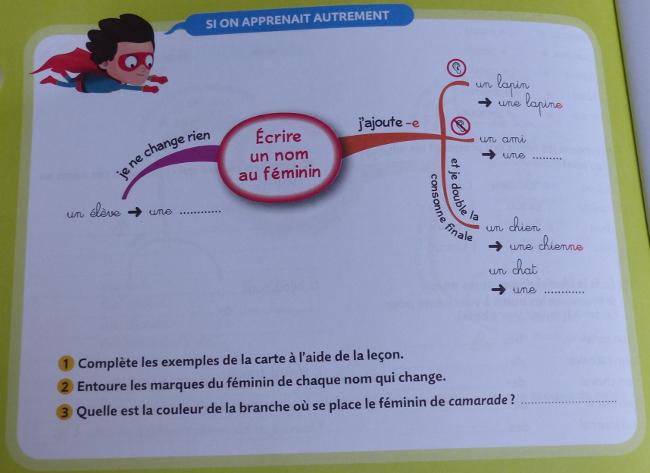 livre de grammaire avec des cartes mentales
