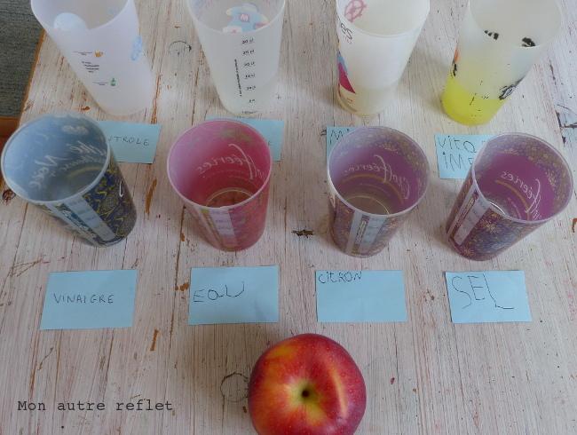 expérience scientifique avec enfants