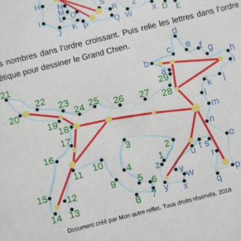 constellations de l'hémisphère sud