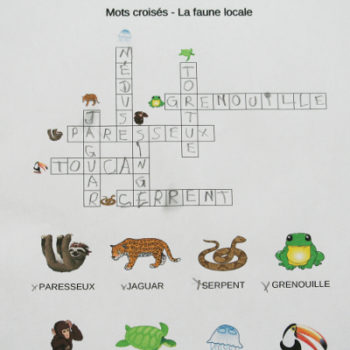 mots croisés sur la faune brésilienne