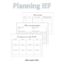 Planning IEF