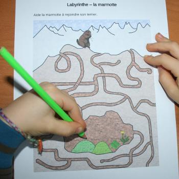 Labyrinthe sur la marmotte