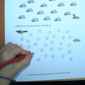 chemin de lettres sur la faune des Pyrénées