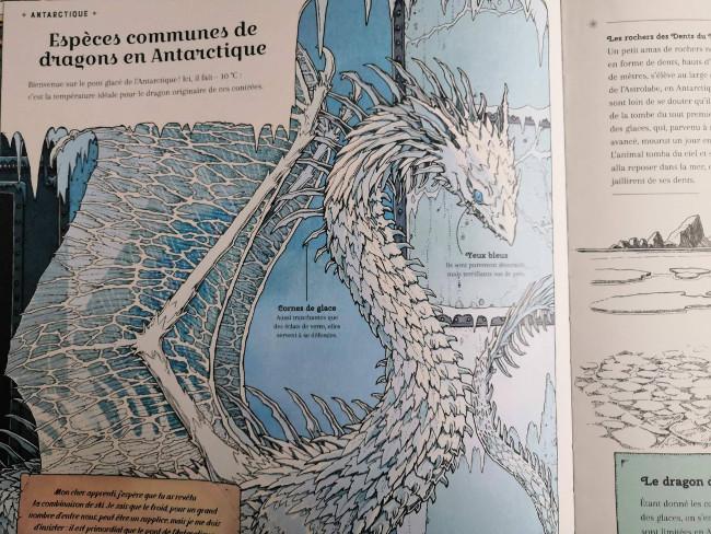 extrait l'arche aux dragons