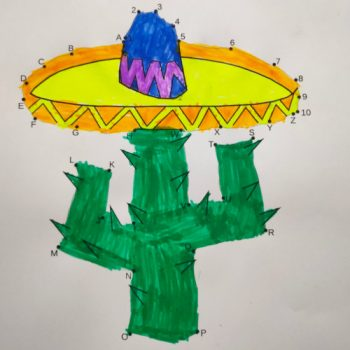 cactus et sombrero