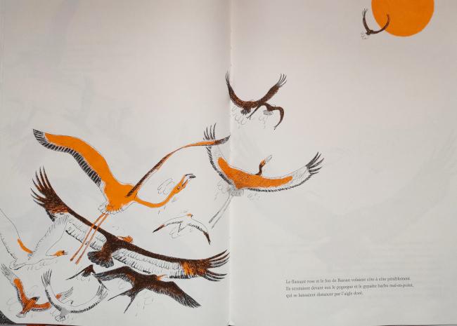 Le roi des oiseaux